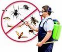 Monthly Commercial Pest Management Services, Delhi