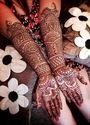 Skin Safe Temporary Black Henna Tattoo for Body Art