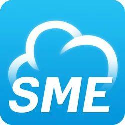 SME Consultant Service