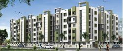 Green City Homes Construction Project