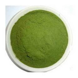 Karela Extract Powder