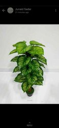 Artificial Money Plant Tree