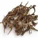 Eranda Mool & Ricinus Commun/ Castor Oil root