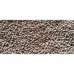 Organic farmers Soybean Seeds