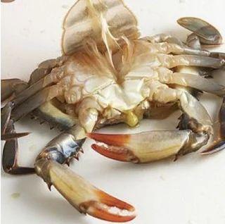 Blue Crab Cut Pcs