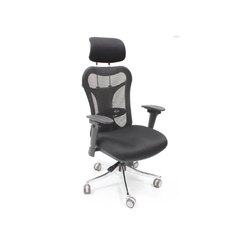 Optima Director Chair