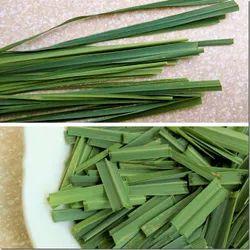 Sukh Garden Tea Lemon Grass Leaves, Packaging Size: 20kg, Dry /Non Dry