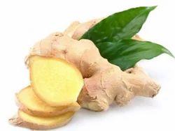 Mango Ginger, 1 Kg