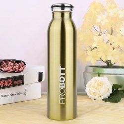 Probott Stainless Steel Double Wall Vacuum Flask Milky Sports Bottle 600ml PB 600-07