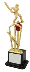 Cricket Golden Trophies