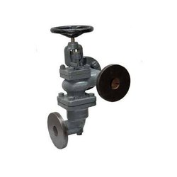 Neta Cast Iron Accessible Feed Check Valve