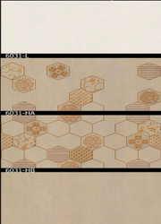 6031 (L, HA, HB) Hexa Ceramic Tiles