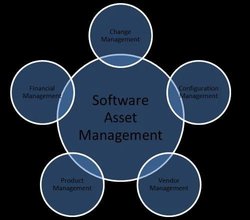 Software Asset Management, Software Asset Management - Best