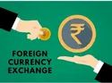 Consulting Firm Corporate Foreign Currency Exchange Service