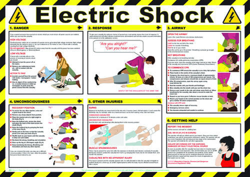 diagram of a rainforest in the undergrowth shock treatment chart, for hospital and laboratory | id ... diagram of safety signs in hd for electrical