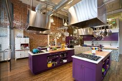 Commercial Designer Purple Kitchens