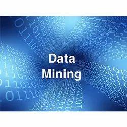 Web Data Mining Services