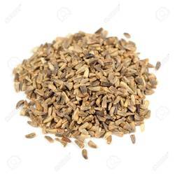 Chicory Seeds, Packaging Type: PP Bags