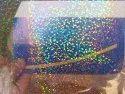 Window Holographic Film Leaf