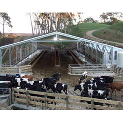 how to start a dairy farm in india pdf