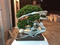Artificial Japaneses Bonsai