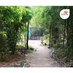 Pench Tiger N Woods Resort Booking Service