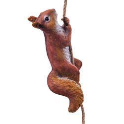 Squirrel Climbing Rope