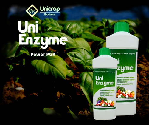 Uni Enzyme (Liquid Organic Fertilizer)