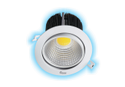 6W LED Cob Spot Light (White And Warm White)
