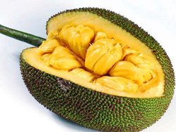 Jackfruit Oil