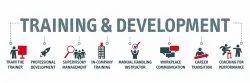 Consultancy Services Training & Development