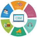 Crm Software Development Services, Service Location/city: Pan India