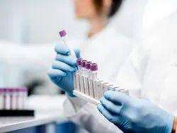 Blood Test Services