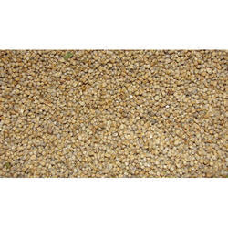 Millet Seed, For Food & Agriculture