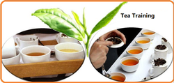 Tea Training Workshop