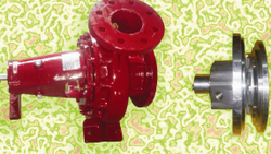 Expeller Design Pumps For Slurry Applications