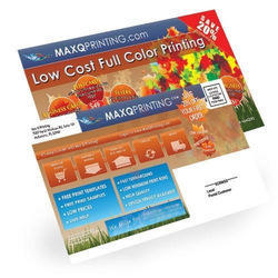 Full Colour Printing Service