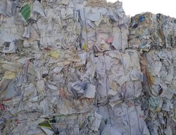 Waste Paper - Paper Scrap Latest Price, Manufacturers