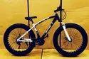 Bmw Black Sleek Design Fat Tyre Cycle