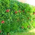 Pvc Outdoor Artificial Vertical Garden