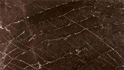 Armani Brown Fossil