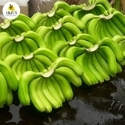 3 Kg Green Banana, Packaging Type: Corrugated Box