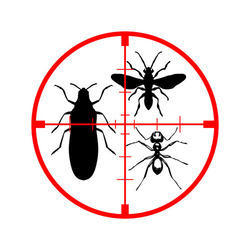 Monthly Insect Control Service