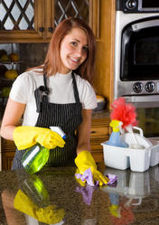 Daily Professional Maid Services