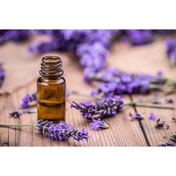 English Lavender Oil