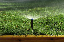 Pop Up Irrigation System