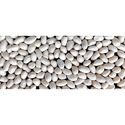 Cotton Seed, Pack Size: 450 Gm