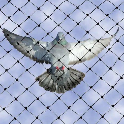 Nylon Anti Bird Net