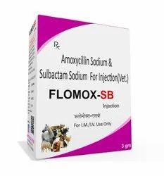 Amoxycilin Sodium And Sulbactam Sodium For Injection (Vet)