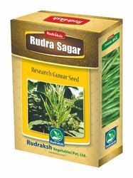 Rudra Sagar Research Guvar Seeds, Pack Size: 500gm